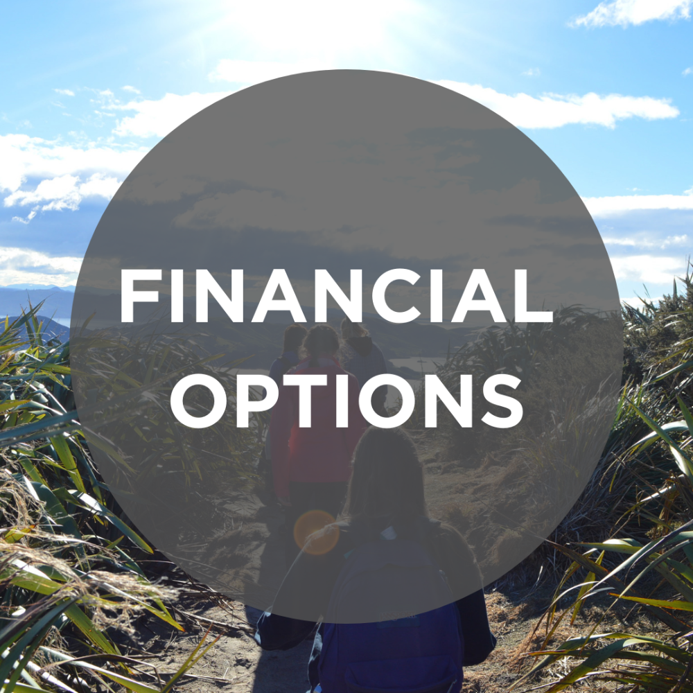 financial options button